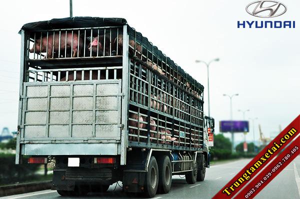 Xe chở gia súc-xe chở heo có bửng nâng 2 tần-trungtamxetai.com